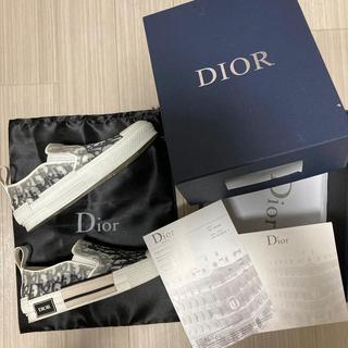 クリスチャンディオール(Christian Dior)のdior dude9 スニーカー スリッポン(スニーカー)