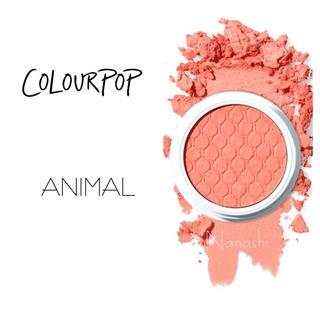 colourpop - colourpop🦄 Animal
