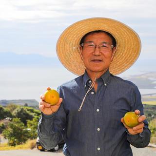 勝春おじいちゃんの美味しいみかん🍊 ひのあかり5kg (フルーツ)