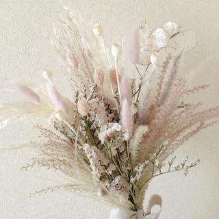 パンパスグラスのスワッグ beige pink1(ドライフラワー)
