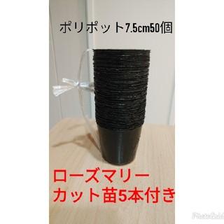 ポリポット 7.5cm 50個(プランター)