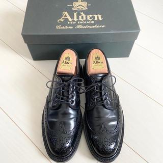 Alden - 【超美品】Alden コードバン 6 1/2 ウィングチップ