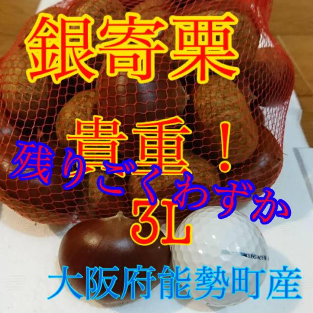 栗 銀寄栗 3L  食品/飲料/酒の食品(野菜)の商品写真