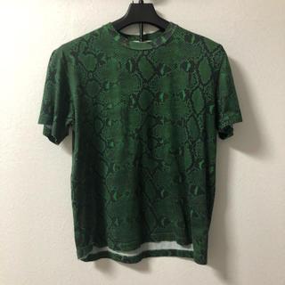 ジョンローレンスサリバン(JOHN LAWRENCE SULLIVAN)のJOHN LAWRENCE SULLIVAN 19aw パイソン tシャツ(Tシャツ/カットソー(半袖/袖なし))