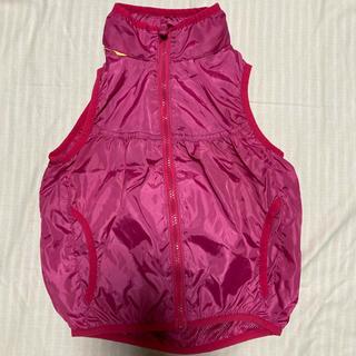 バックナンバー(BACK NUMBER)のピンクのパッカブルウェアベスト(ジャケット/上着)