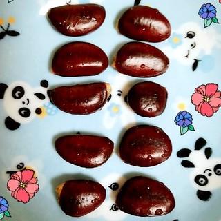 ポポーの種 10個 春まき(フルーツ)