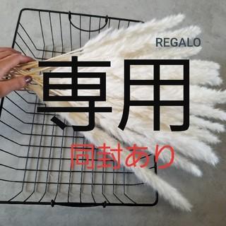 ブラウン パンパスグラス テールリード ナチュラル インテリア 韓国 IKEA(ドライフラワー)
