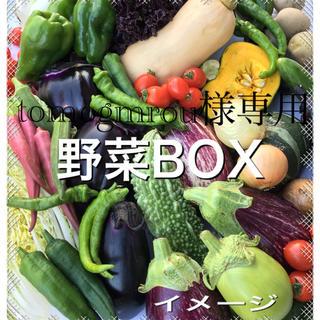 野菜BOX Lサイズ tomogmrou様専用(野菜)