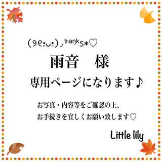 雨音様【8-3PVラベンダー】ネックレスセット 40cmチェーン、金属ピアス(ピアス)