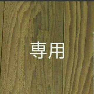【専用】ホワイトレースフラワー 100粒  花種  白花(プランター)