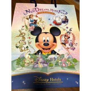 Disney - 新エリア ディズニーランドホテル☆アメニティ用紙袋☆即購入可能