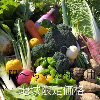 野菜BOX Lサイズ 陽〜ちゃん様専用(野菜)