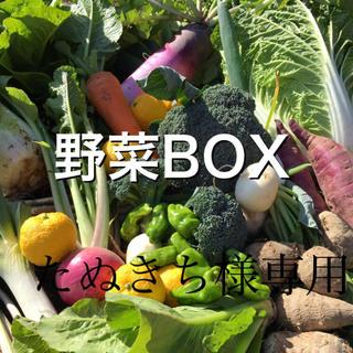野菜BOX Mサイズ たぬきち様専用(野菜)
