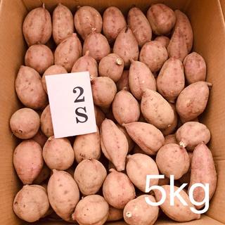 【絶品】種子島産  安納芋SS 5kg(野菜)