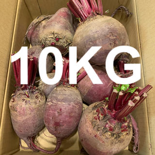 新鮮!北海道 江別産 ビーツ 10kg 送料込み(野菜)