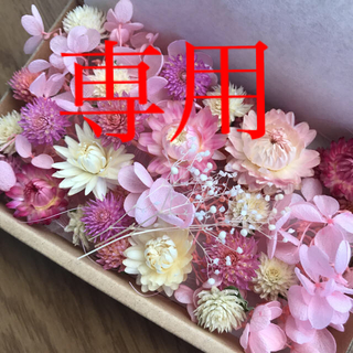 ママ様専用☆プリザーブド&ドライフラワー花材MIX(ドライフラワー)