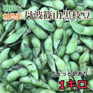 無農薬⚫︎丹波篠山黒枝豆⚫︎ちょっと訳あり豆⚫︎さや1キロ 豆ご飯にも!(野菜)