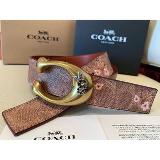 コーチ(COACH)の期間限定価格!新品COACH フローラルプリントシグネチャーリバーシブルベルト(ベルト)