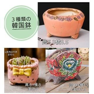 3種類の韓国鉢  セット おまとめ(その他)