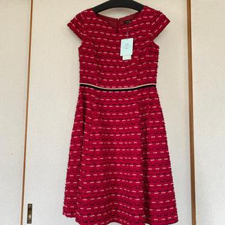 トッカ(TOCCA)のお値下げ☺️TOCCA  ドレス サイズ6   新品タグ付き(ロングワンピース/マキシワンピース)