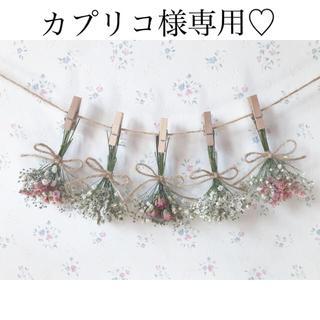 ベージュピンクのバラとかすみ草のふんわりサーモンピンクドライフラワーガーランド♡(ドライフラワー)