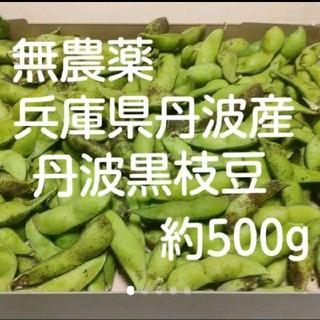 【正真正銘 産地直送】 兵庫県丹波産 無農薬 黒枝豆(野菜)