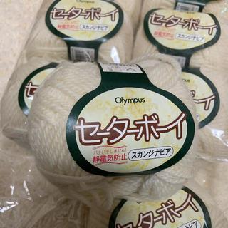 オリンパス(OLYMPUS)のオリムパス製絲 毛99% 毛糸 11玉(生地/糸)