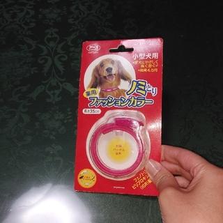 アースバイオケミカル(アースバイオケミカル)の⭐ノミとり首輪  小型犬用(犬)
