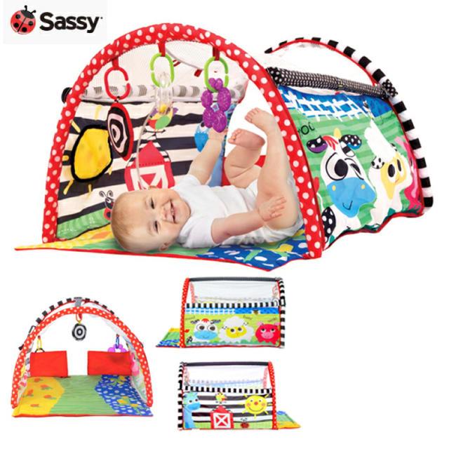 Sassy(サッシー)のsassyサッシー プレイマット トンネル キッズ/ベビー/マタニティのおもちゃ(ベビージム)の商品写真