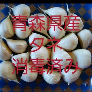 青森県産にんにくタネ★小粒★150g★ニンニク(野菜)