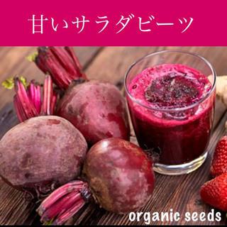 大人気!◆甘い♡サラダビーツ◆育てやすい健康野菜【オーガニック種子 50粒】(その他)