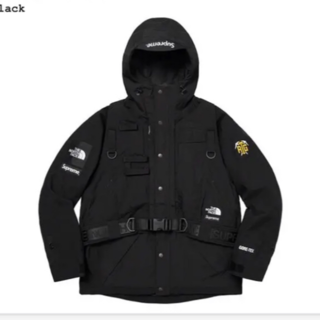 Supreme The North Face RTG Jacket Vest(マウンテンパーカー)
