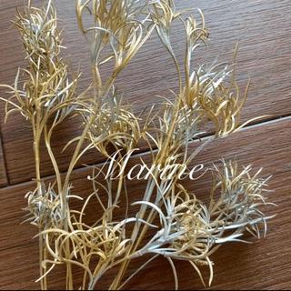 ꫛꫀꪝ花材 パズルグラス ゴールドシルバー ハーバリウム花材 クリスマス(ドライフラワー)