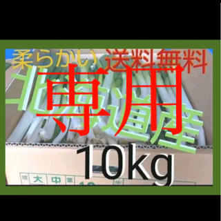 なんかごめん様専用 北海道  長ねぎ 10kg 農家直送【訳あり】順次発送(野菜)