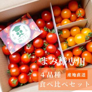 ミニトマト [まみ様専用] 採れたて☘️産地直送いたします(野菜)