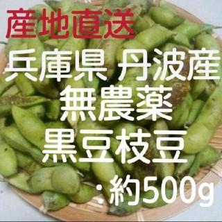 兵庫県丹波産 無農薬 丹波の黒枝豆(野菜)