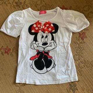 Disney - ディズニーリゾート ミニー Tシャツ