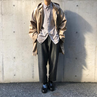コモリ(COMOLI)のauralee FINX POLYESTER HOODED COAT (その他)