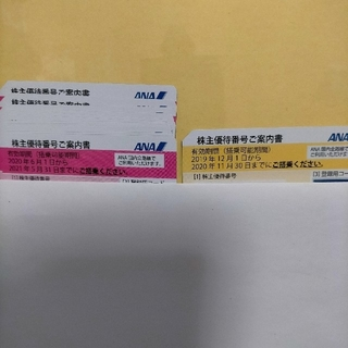 エーエヌエー(ゼンニッポンクウユ)(ANA(全日本空輸))のANA株主優待12枚(航空券)