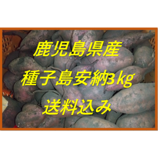 鹿児島県産 種子島安納芋 約3kg(野菜)