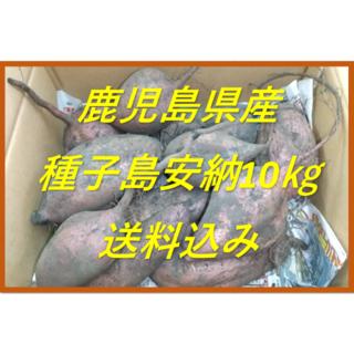 鹿児島県産 種子島安納芋 約10㎏(土付き)(野菜)
