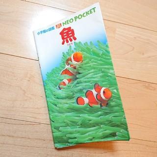 ショウガクカン(小学館)の小学館の図鑑 魚 NEO POCKET(絵本/児童書)