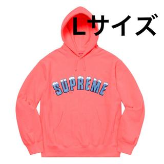 シュプリーム(Supreme)の supreme Icy Arc Hooded Sweatshirt  (パーカー)