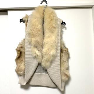 ダブルスタンダードクロージング(DOUBLE STANDARD CLOTHING)のダブルスタンダードクロージング フォックス ファー ベスト(ベスト/ジレ)