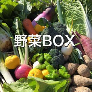 野菜BOX Lサイズ 大阪迄送料(野菜)