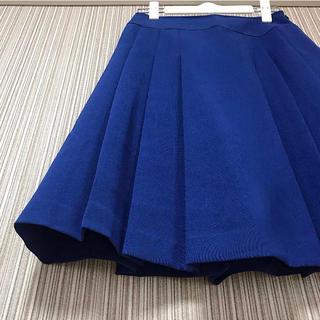 テチチ(Techichi)の《未使用に近い・早い者勝ち》定価2万円 Techichi Aラインフレアスカート(ひざ丈スカート)