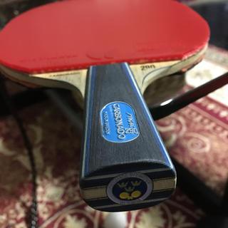 スティガ  カーボネード290 卓球 ラケット 中国式 ディグニクス テナジー(卓球)
