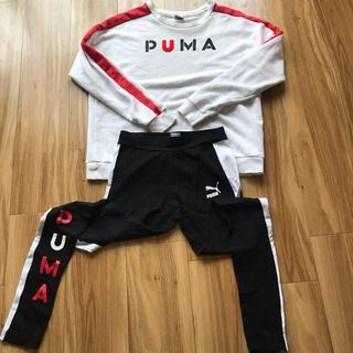 プーマ(PUMA)のプーマ オンライン限定 トレーナー &レギンス セット(トレーナー/スウェット)