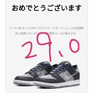 ナイキ(NIKE)のNIKE SB ダンク LOW プロ Dark Grey 29.0cm(スニーカー)