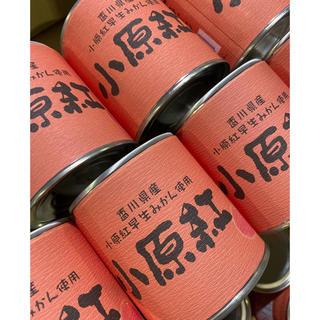 小原紅みかん缶詰 24個入り(缶詰/瓶詰)
